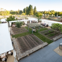 The Copia Culinary Gardens set up for an outdoor wedding reception at the CIA at Copia in Napa, CA.