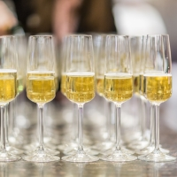 Glasses of champagne for an event at The Culinary Institute of America at Greystone in St. Helena, CA.