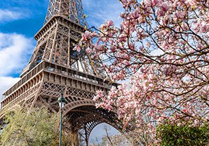 springtime by the eiffel tower